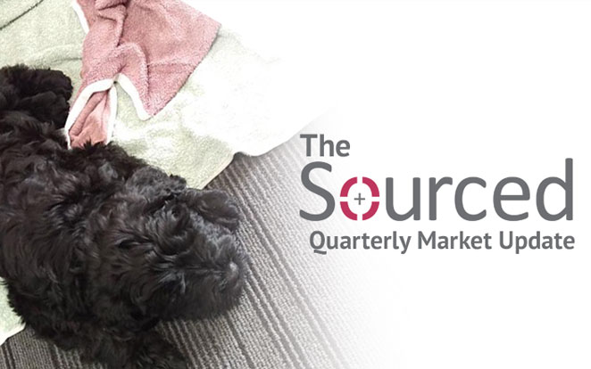Ted the BRT joins Sourced's IT market update